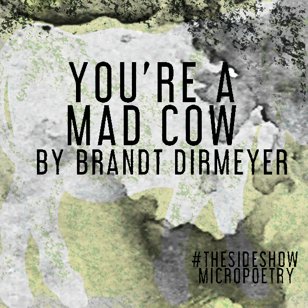 You're a Mad Cow
