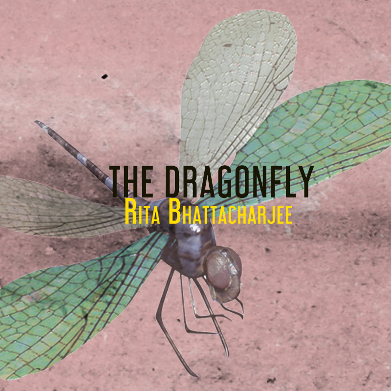 The Dragonfly by Rita Bhattacharjee | Flash fiction